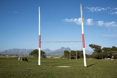 Macassar village and rugby pitch with cows grazing Stock Photos