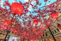 Macau, China - 24 de janeiro de 2016: Lanternas e festões chinesas vermelhas de sakura como decorações internas sob o céu azul ar Imagens de Stock Royalty Free