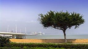 Macau at Morning. Royalty Free Stock Images