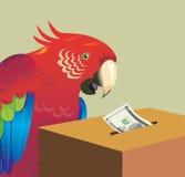 Macaw ilustração royalty free