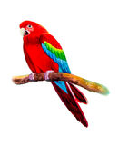 Macaw bird on a branch. Painting on paper colorful of Macaw bird  on a branch and emotion on the white background. Watercolor hand painted Stock Photo
