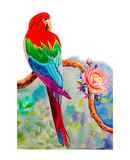 Macaw bird on a branch,and roses amidst beautiful nature. Royalty Free Stock Images