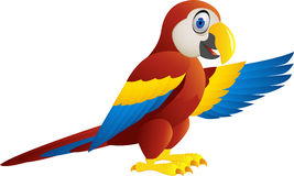 Macaw bird cartoon waving Royalty Free Stock Photos