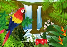 Macaw bird with nature background Royalty Free Stock Image