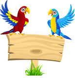 Macaw with blank signboard Royalty Free Stock Images