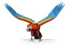 Macaw d'écarlate sur le bord de signe - avec le chemin de découpage Photographie stock libre de droits