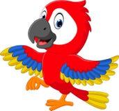 Macaw de la historieta Imagen de archivo libre de regalías