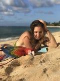 Macaw en la playa fotografía de archivo libre de regalías