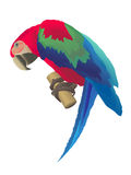 A macaw parrot. Macaw parrot of red and blue colors. AI file attached Stock Photography