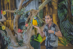 Macaw parrot, ara Royalty Free Stock Photography