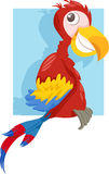 Macaw parrot cartoon illustration Stock Image