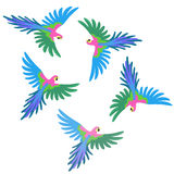 Macaw parrot flock pattern Royalty Free Stock Photos