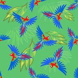 Macaw parrot seamless pattern Royalty Free Stock Photo
