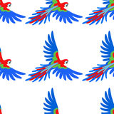 Macaw parrot seamless pattern Royalty Free Stock Photos
