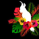 Macaw parrots with green palm leaves and pink hibiscus flowers. Tropical illustration with birds and plants. Macaw parrots with green palm leaves and pink Stock Photos