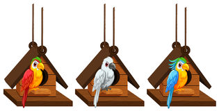 Macaw parrots living in birdhouse. Illustration Royalty Free Stock Photos