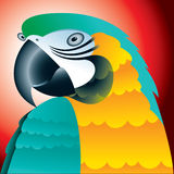 Macaw portrait Royalty Free Stock Photography