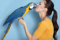 Macaw Stock Photography