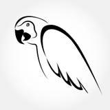 Macaw profile portrait Royalty Free Stock Image