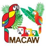 Macaw Set1 Stock Photos