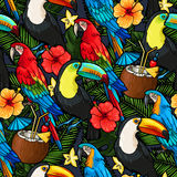 Macaw and tropical cocktail seamless Royalty Free Stock Images