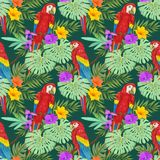 Macaw with tropical plant and flowers. stock illustration