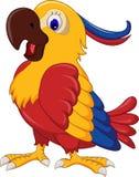 Macaw wing bird cartoon Stock Image