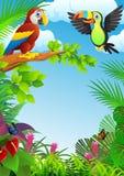 Macawvogel Stockbild
