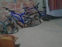 Maccanne的一辆自行车是曾祖父 库存照片