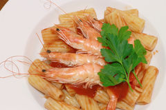 Maccaroni with shrimp Stock Image
