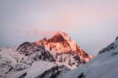 Macchapuchhre al tramonto fotografia stock