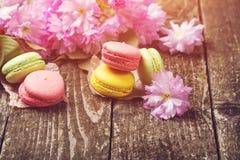 Maccheroni francesi variopinti e fiori di sakura Copi lo spazio prescelto immagine stock