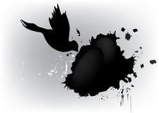 Macchia del grunge e della colomba Fotografia Stock Libera da Diritti