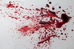 Macchia di sangue schizzata su fondo bianco - foto fotografie stock libere da diritti