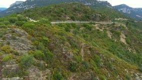 Macchia landscape stock video footage