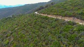 Macchia landscape stock video