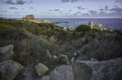 Macchia Mediterranea. Detail of a natural, rocky and partially covered with Mediterranean vegetation: The natural terrain of the coasts of southern Sardinia stock images