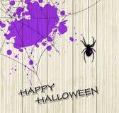 Macchie della viola e del ragno Fotografia Stock Libera da Diritti