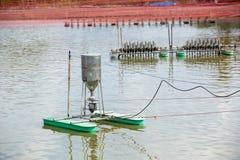 Macchina automatica dell'alimentatore che galleggia sullo stagno di acquacoltura Alimentatore di Autometic o alimentazione automa immagine stock