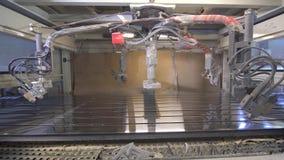 Macchina automatica della verniciatura a spruzzo di vista, macchina di modellatura della pittura di legno archivi video