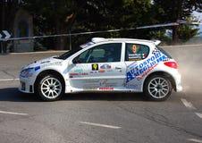 Macchina da corsa Peugeot 206 Fotografia Stock
