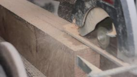 Macchina della sega di legno di uso dei lavoratori dell'officina sawing di legno stock footage