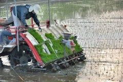 Macchina delle piantine del riso del trapianto Immagini Stock