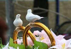 Macchina di cerimonia nuziale con la colomba Immagini Stock Libere da Diritti