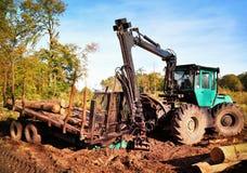 Macchina di industria del legname con il mucchio di legno Fotografia Stock
