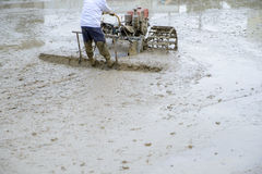 Macchina e agricoltore dell'aratro nella risaia Fotografie Stock Libere da Diritti