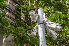 Macchina fotografica all'aperto del CCTV di angolo multiplo sul Palo vicino all'albero Immagini Stock