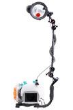Macchina fotografica subacquea con lo stroboscopio Fotografia Stock