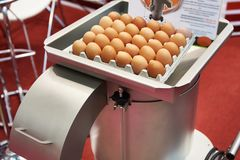 Macchina per la rottura delle uova Fotografia Stock