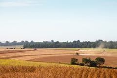 Macchinario agricolo che raccoglie la soia fotografie stock